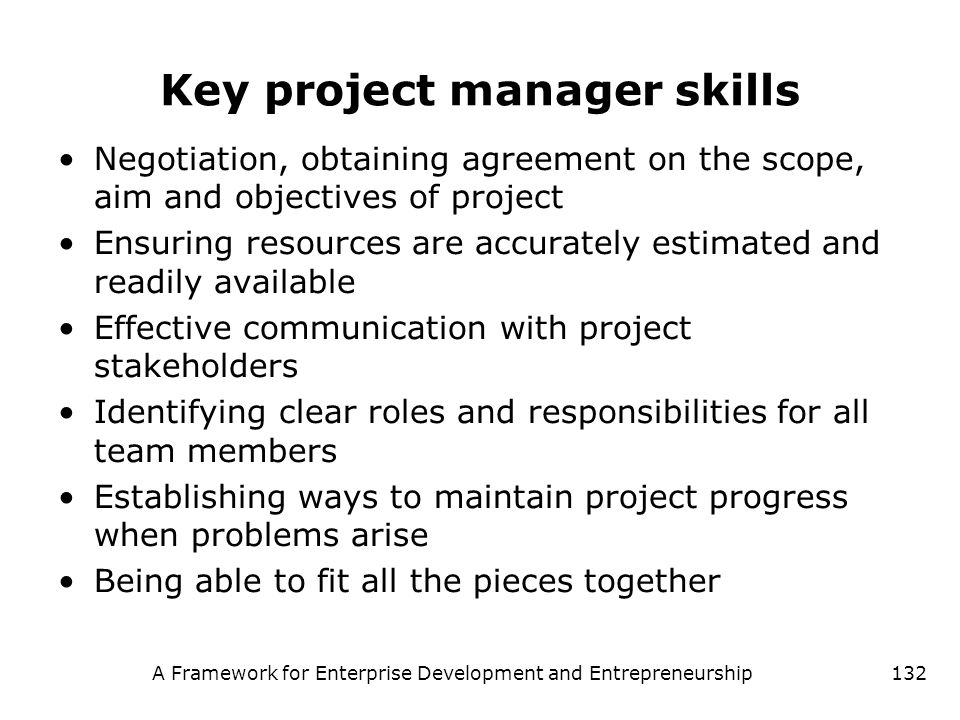 Key project manager skills