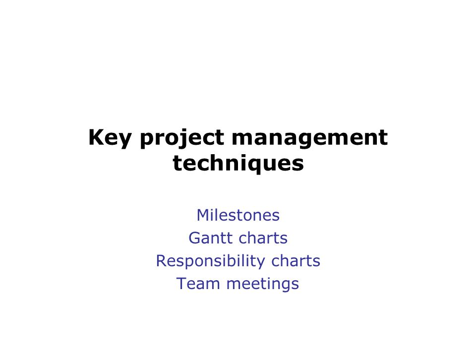 Key project management techniques