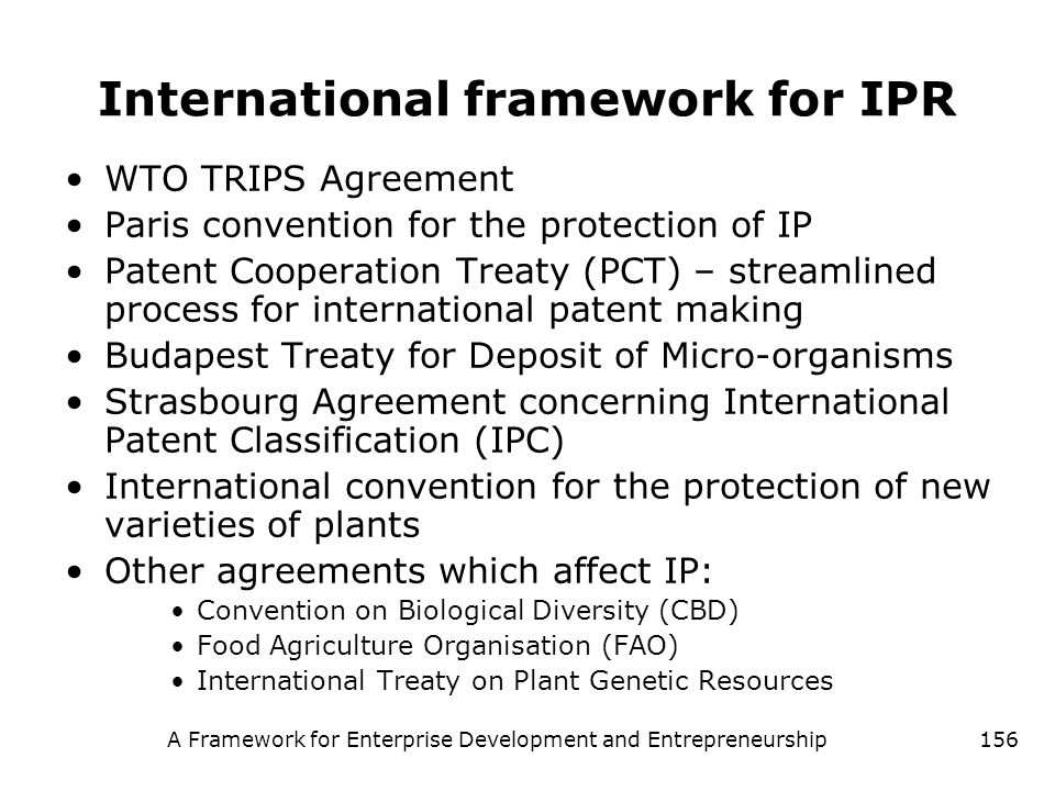 International framework for IPR