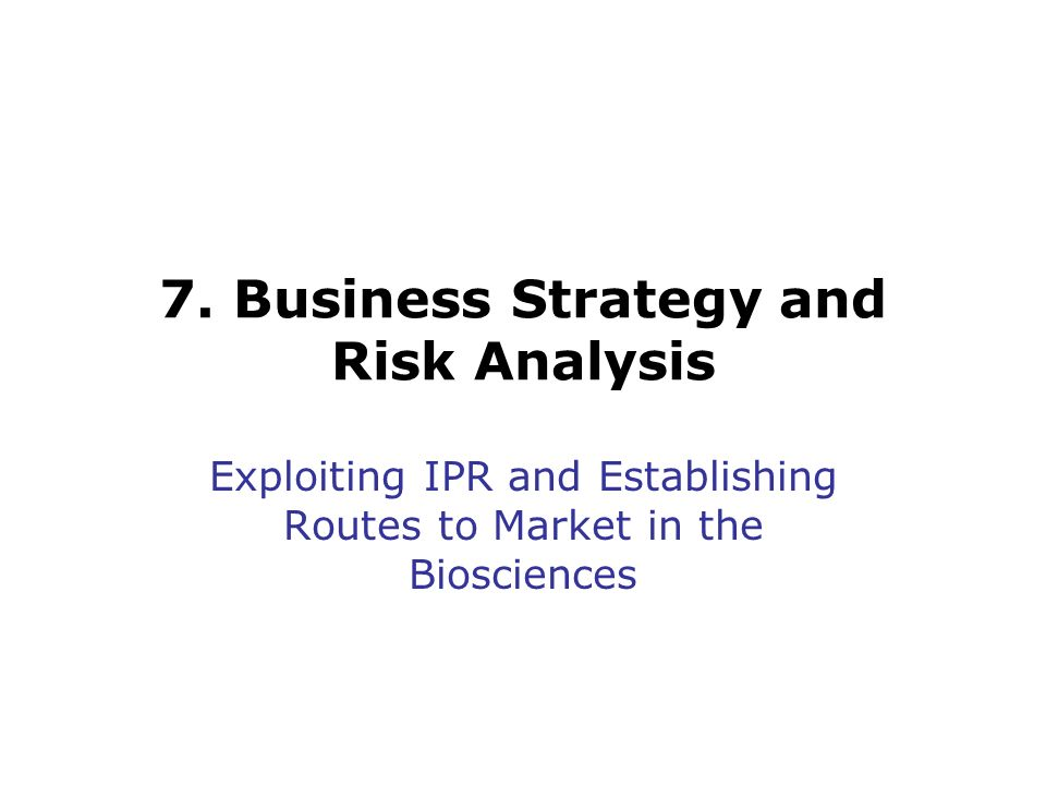 7. Business Strategy and Risk Analysis