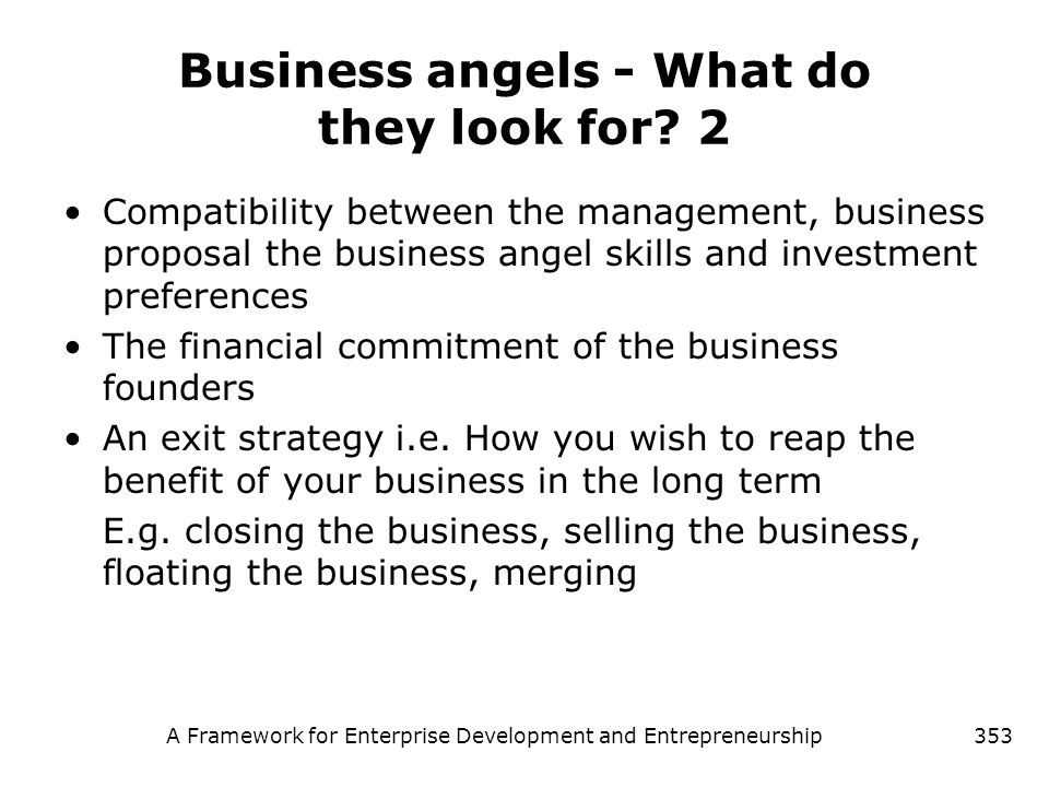 Business angels - What do they look for 2