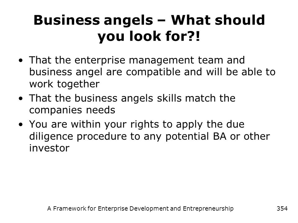 Business angels – What should you look for !
