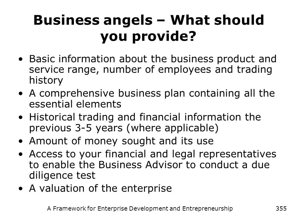 Business angels – What should you provide