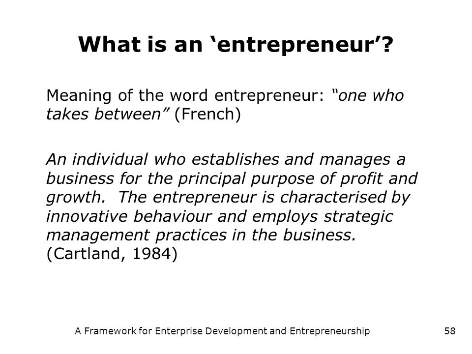 What is an 'entrepreneur'