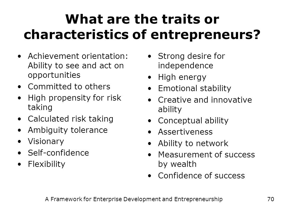 What are the traits or characteristics of entrepreneurs