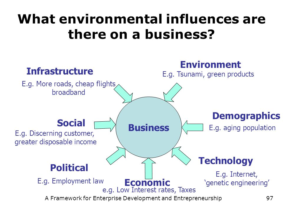 What environmental influences are there on a business