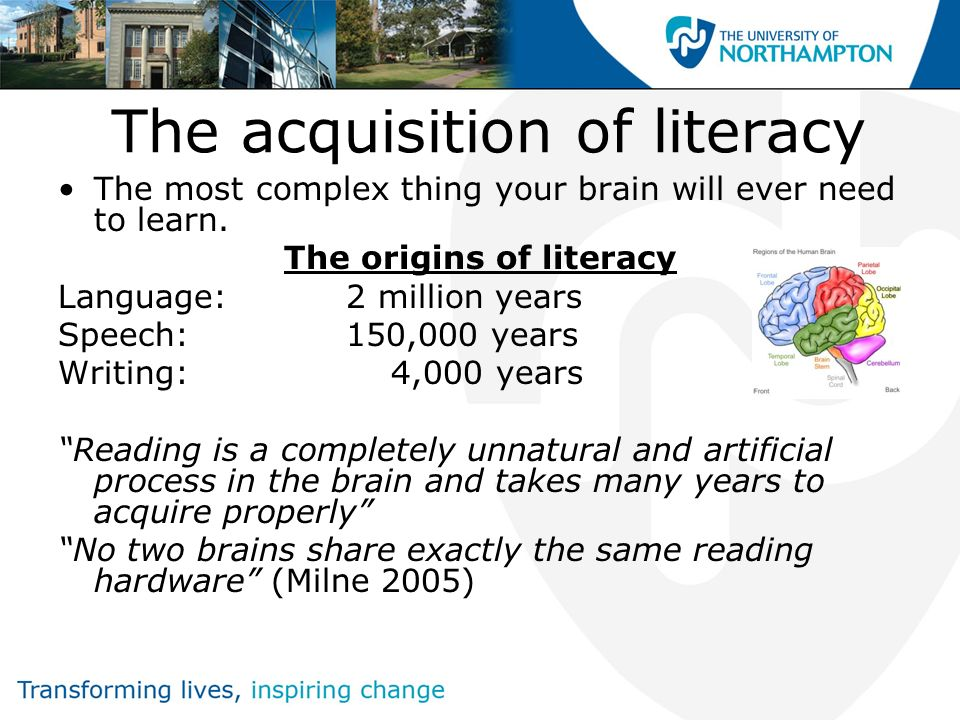 The acquisition of literacy