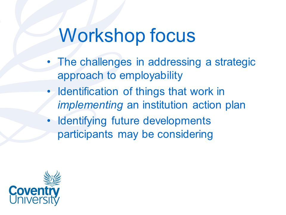 Workshop focus The challenges in addressing a strategic approach to employability.