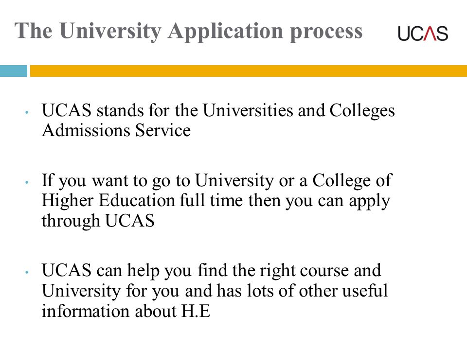 The University Application process