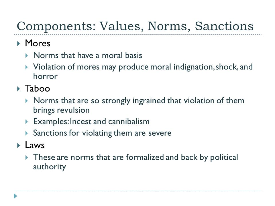 the norms that are expected from the members of political institutions Socialization is the process through which people are taught to be proficient members of a society it describes the ways that people come to understand societal norms and expectations, to accept society's beliefs, and to be aware of societal values.