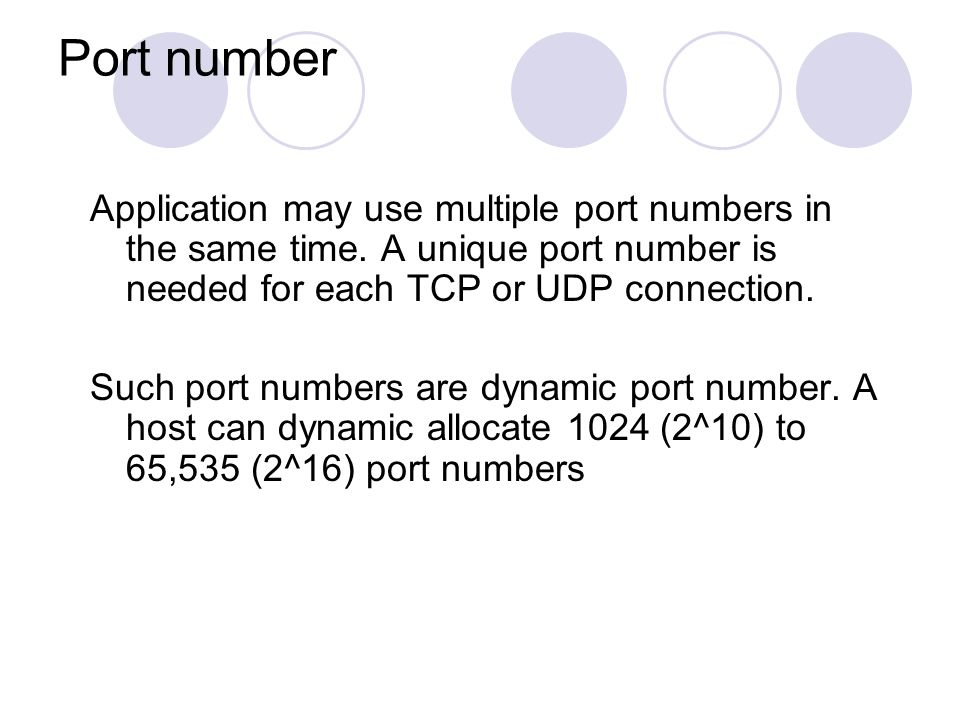 a port number which identifies an application on a host