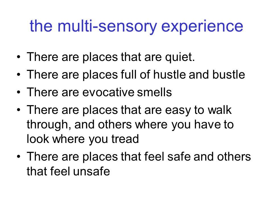 the multi-sensory experience