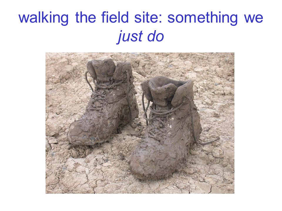 walking the field site: something we just do
