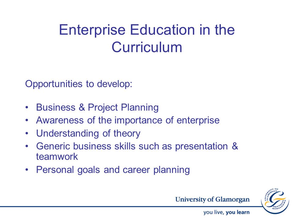 Enterprise Education in the Curriculum