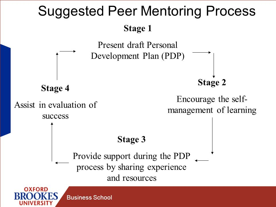 Suggested Peer Mentoring Process