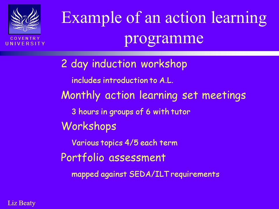 Example of an action learning programme