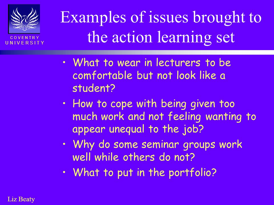 Examples of issues brought to the action learning set