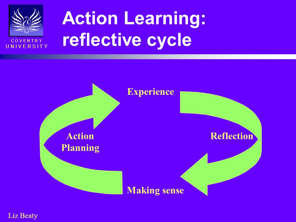 Action Learning: reflective cycle