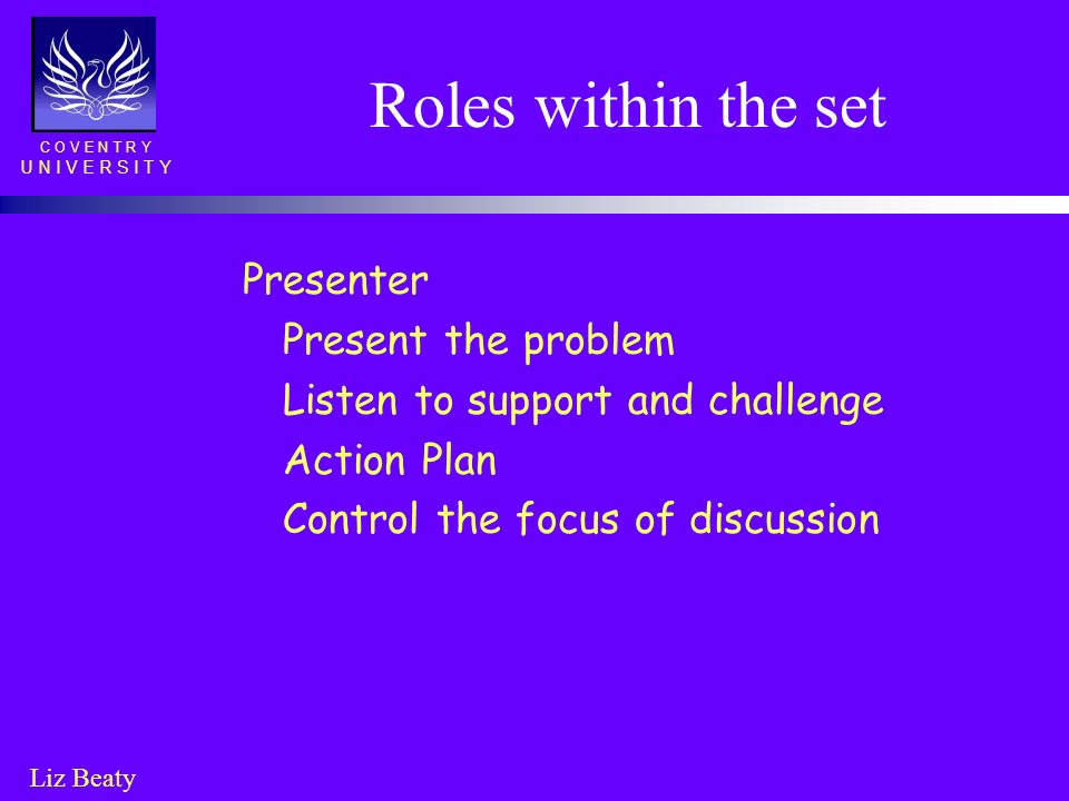 Roles within the set Presenter Present the problem