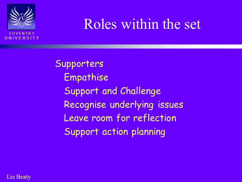 Roles within the set Supporters Empathise Support and Challenge