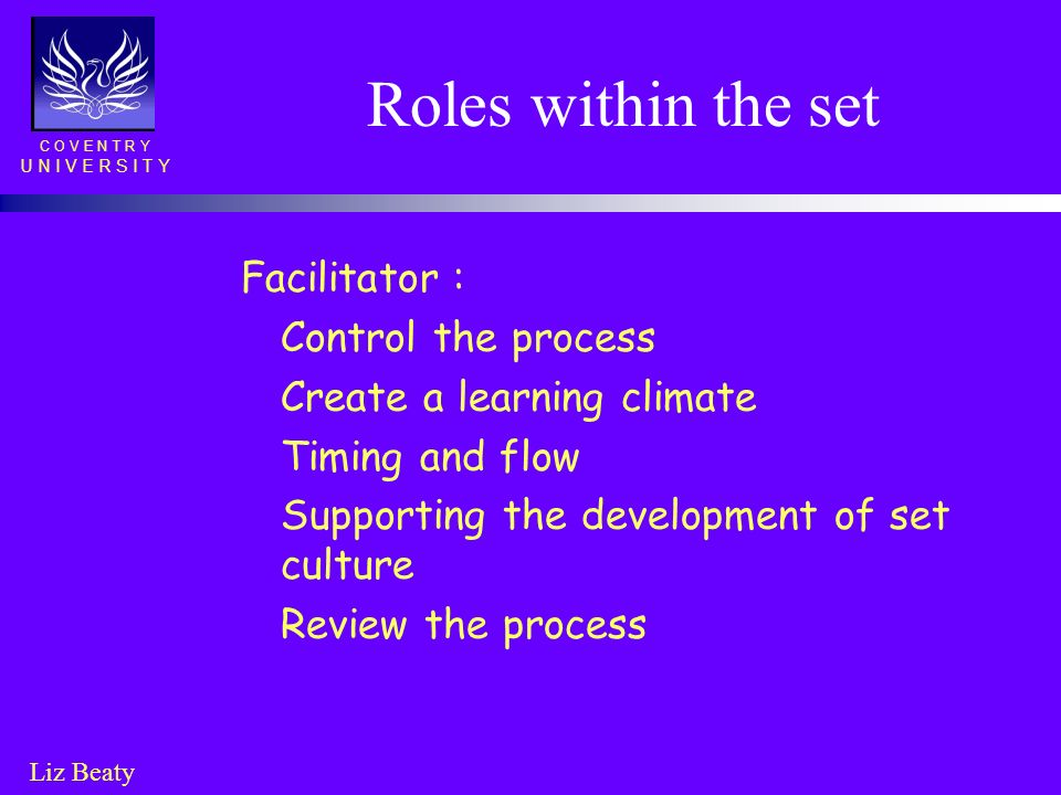 Roles within the set Facilitator : Control the process