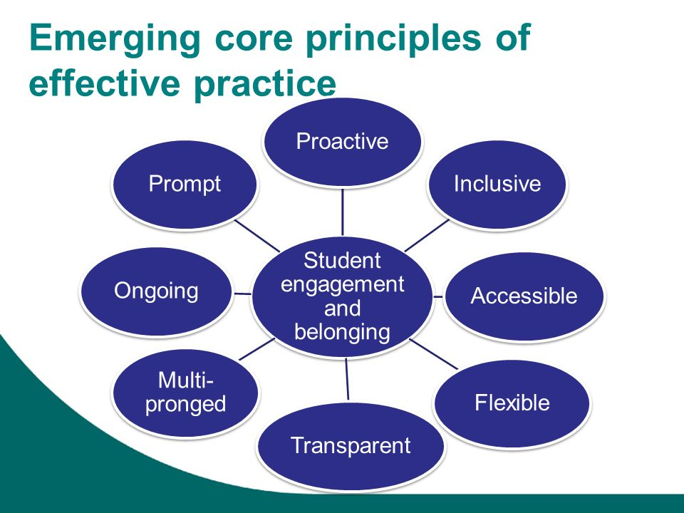 Emerging core principles of effective practice