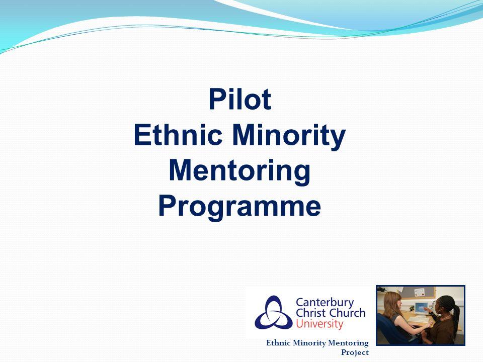 Ethnic Minority Mentoring Programme