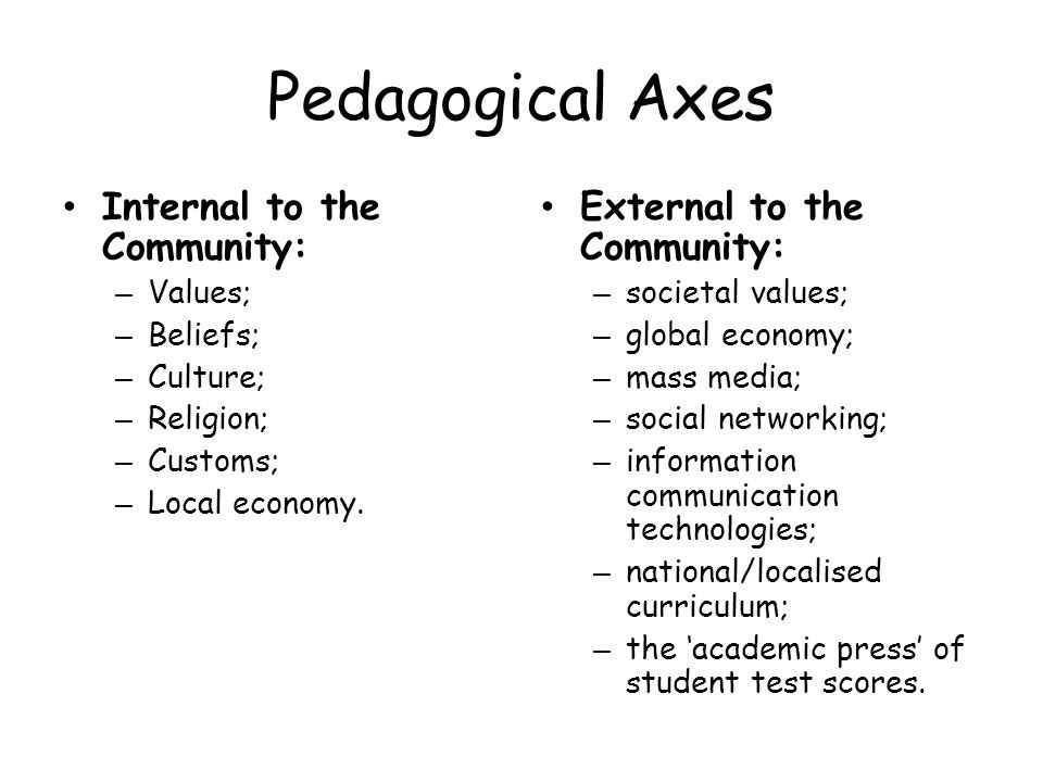 Pedagogical Axes Internal to the Community: External to the Community: