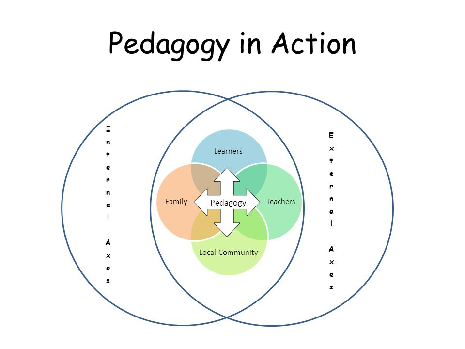 Pedagogy in Action Pedagogy Learners Teachers Local Community Family