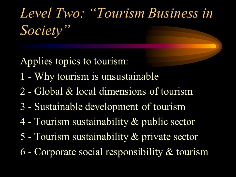 Level Two: Tourism Business in Society