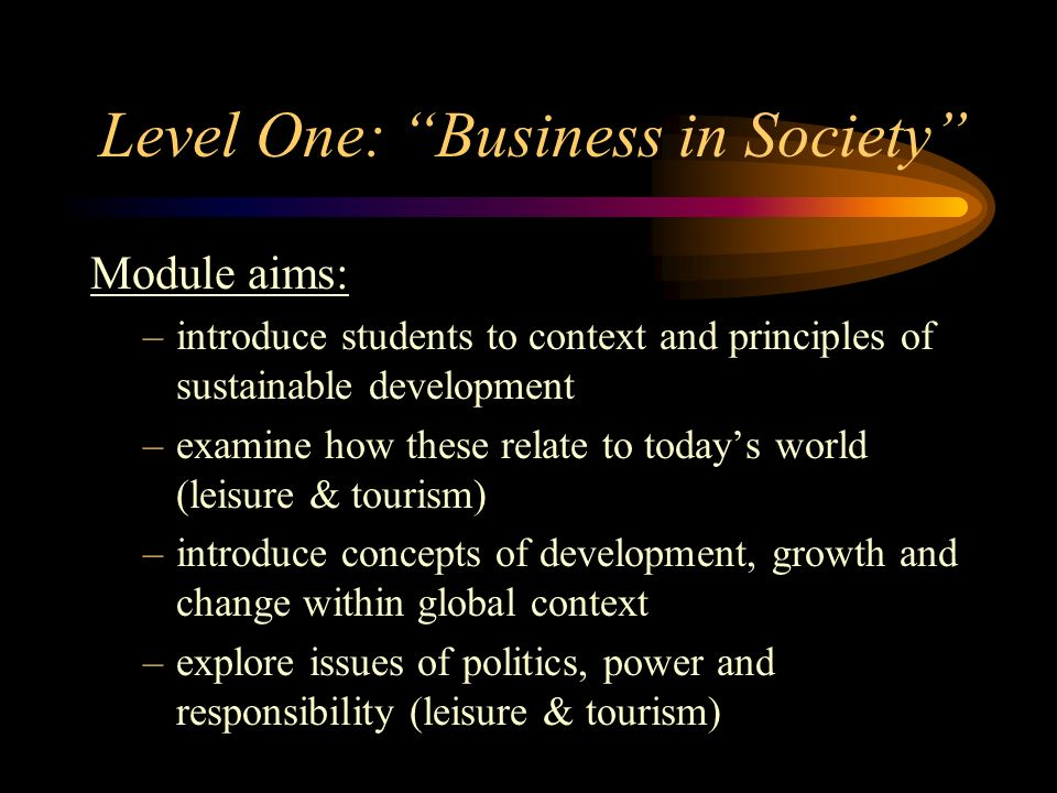 Level One: Business in Society
