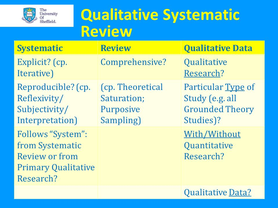 Qualitative Systematic Review