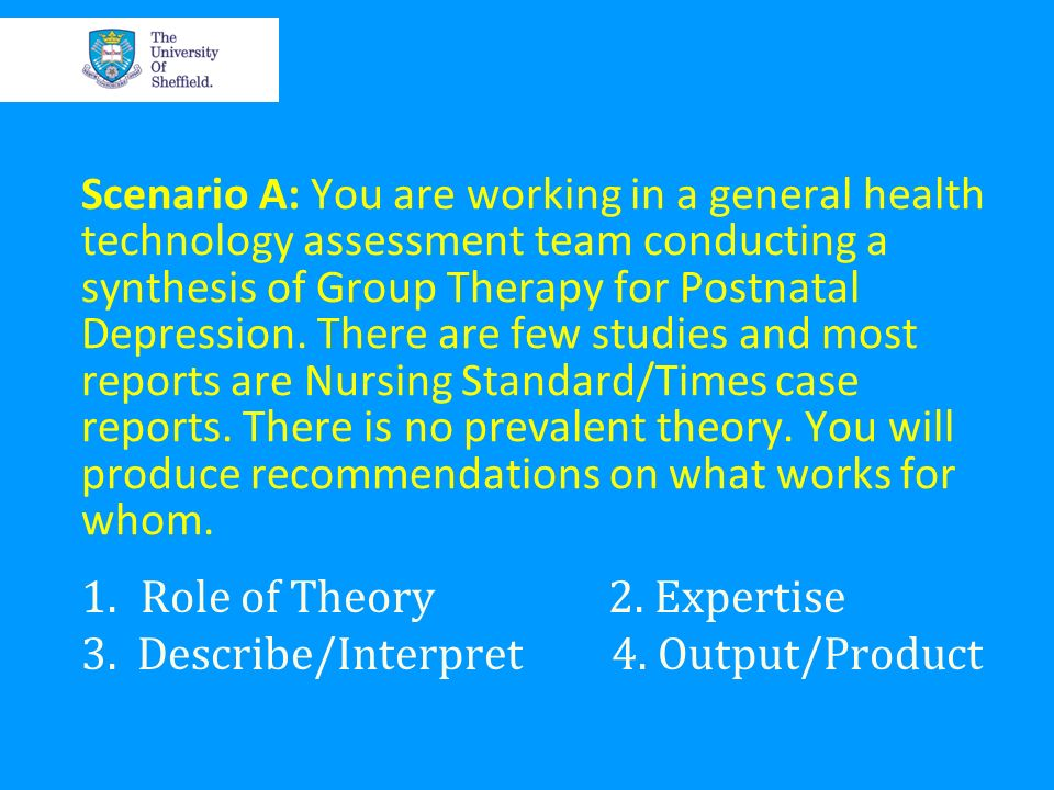 Role of Theory 2. Expertise 3. Describe/Interpret 4. Output/Product