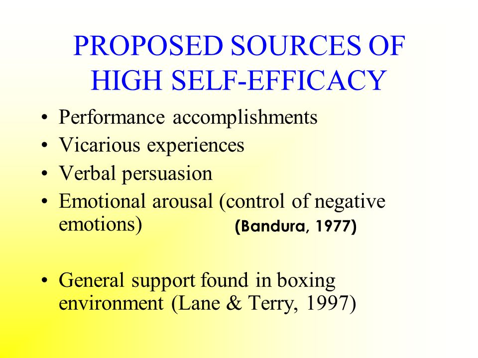 PROPOSED SOURCES OF HIGH SELF-EFFICACY
