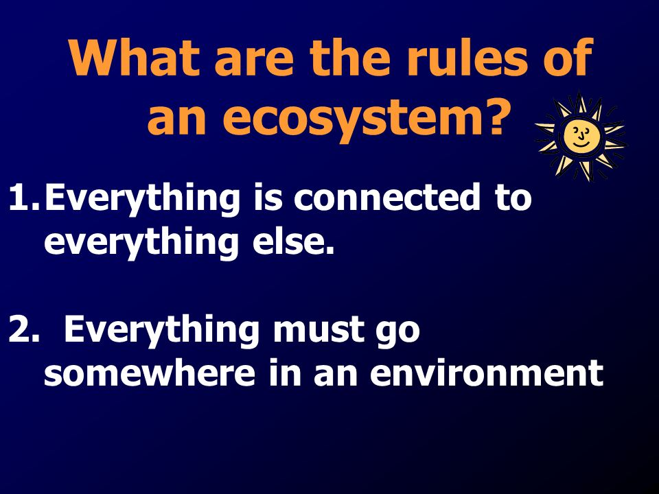 What are the rules of an ecosystem