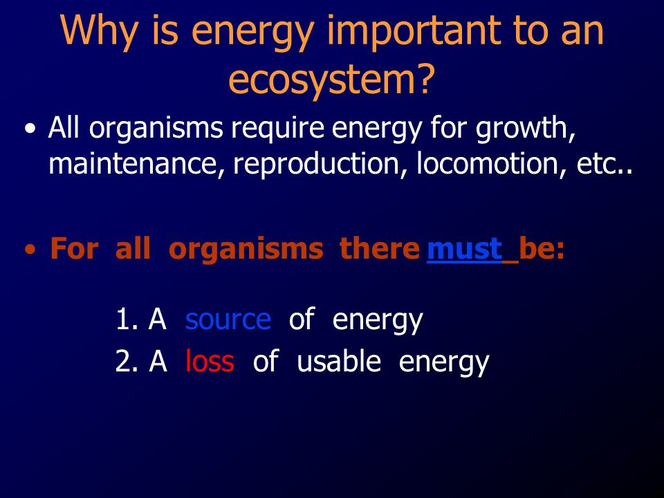 Why is energy important to an ecosystem