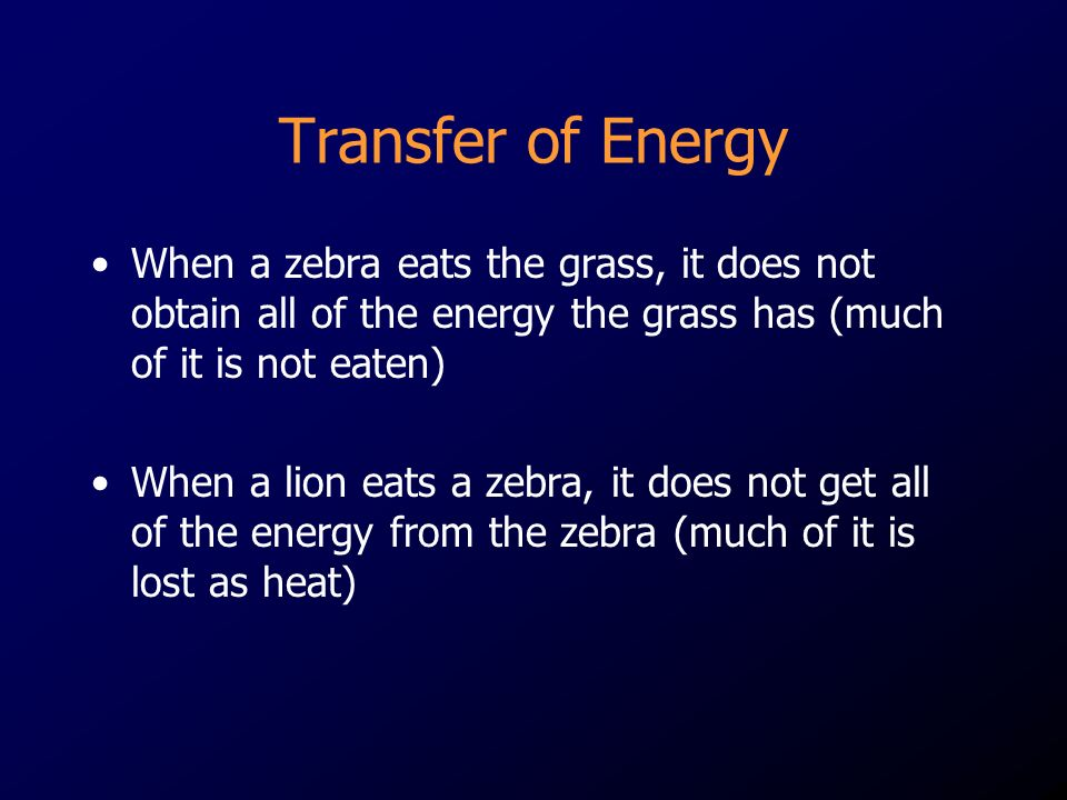 Transfer of Energy When a zebra eats the grass, it does not obtain all of the energy the grass has (much of it is not eaten)