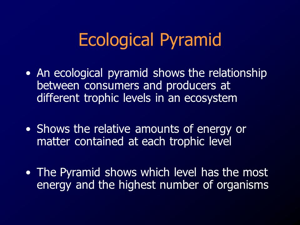 Ecological Pyramid An ecological pyramid shows the relationship between consumers and producers at different trophic levels in an ecosystem.