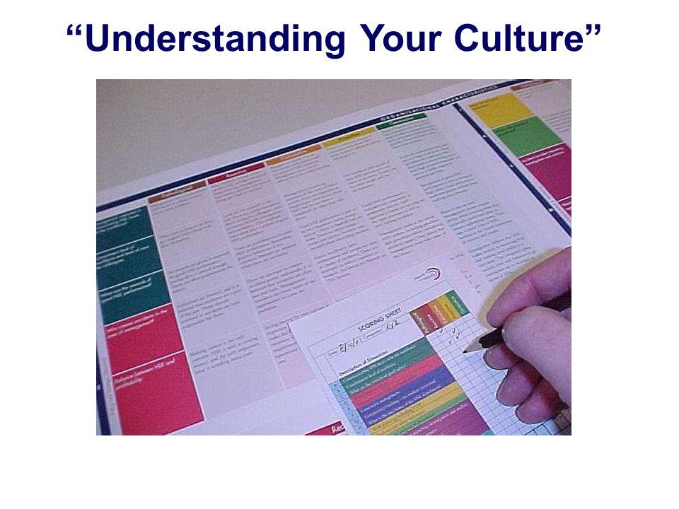 Understanding Your Culture