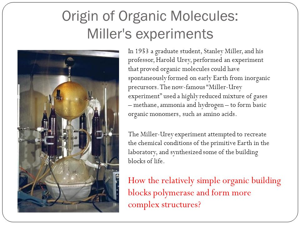 the amino acid experiments of stanley miller in 1953 1953 was a landmark year for scientists researching an evolutionary explanation  for  stanley miller reported that he had conducted an experiment which  replicated  miller's experiment did produce the amino acids, but only by  continuously.