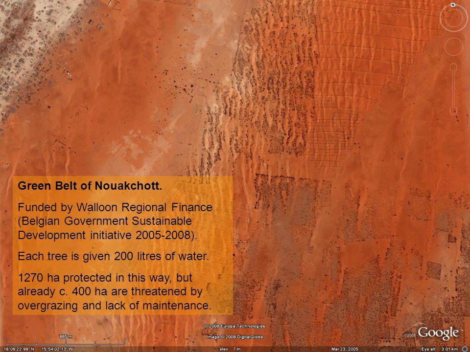 Green Belt of Nouakchott.