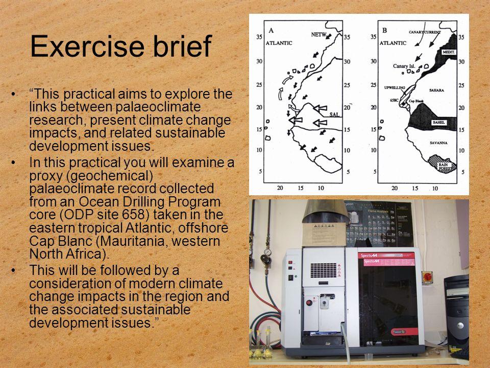 Exercise brief