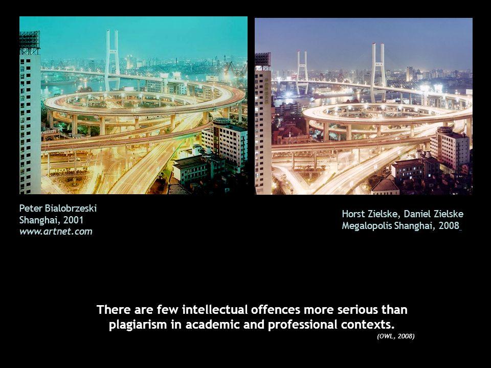 Peter Bialobrzeski Shanghai, 2001. www.artnet.com. Horst Zielske, Daniel Zielske. Megalopolis Shanghai, 2008.