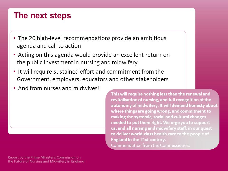 The next steps The 20 high-level recommendations provide an ambitious agenda and call to action.