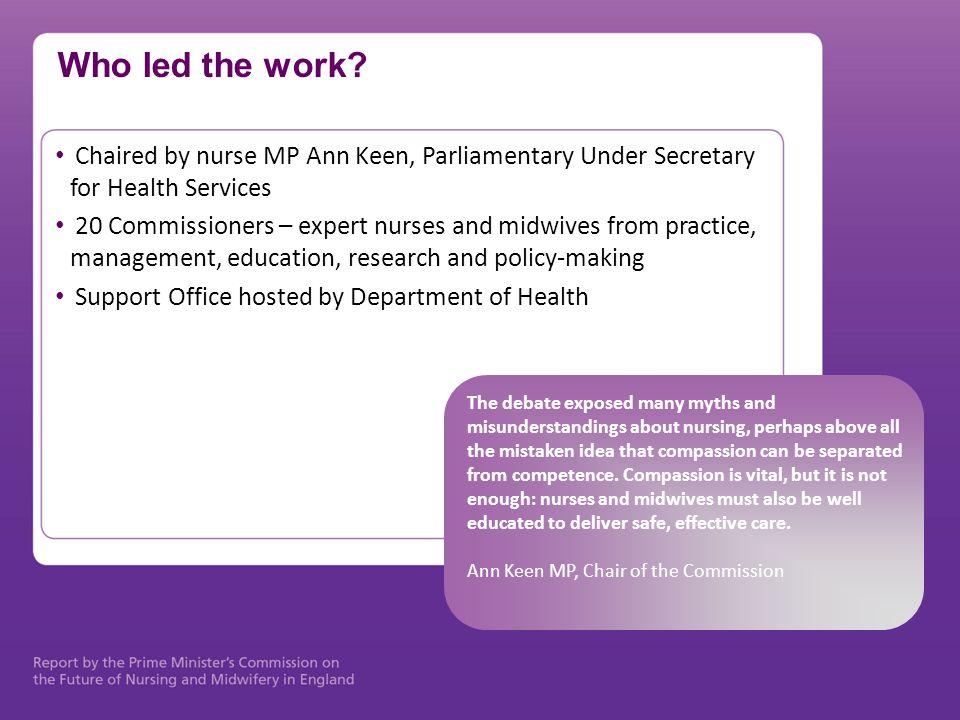 Who led the work Chaired by nurse MP Ann Keen, Parliamentary Under Secretary for Health Services.