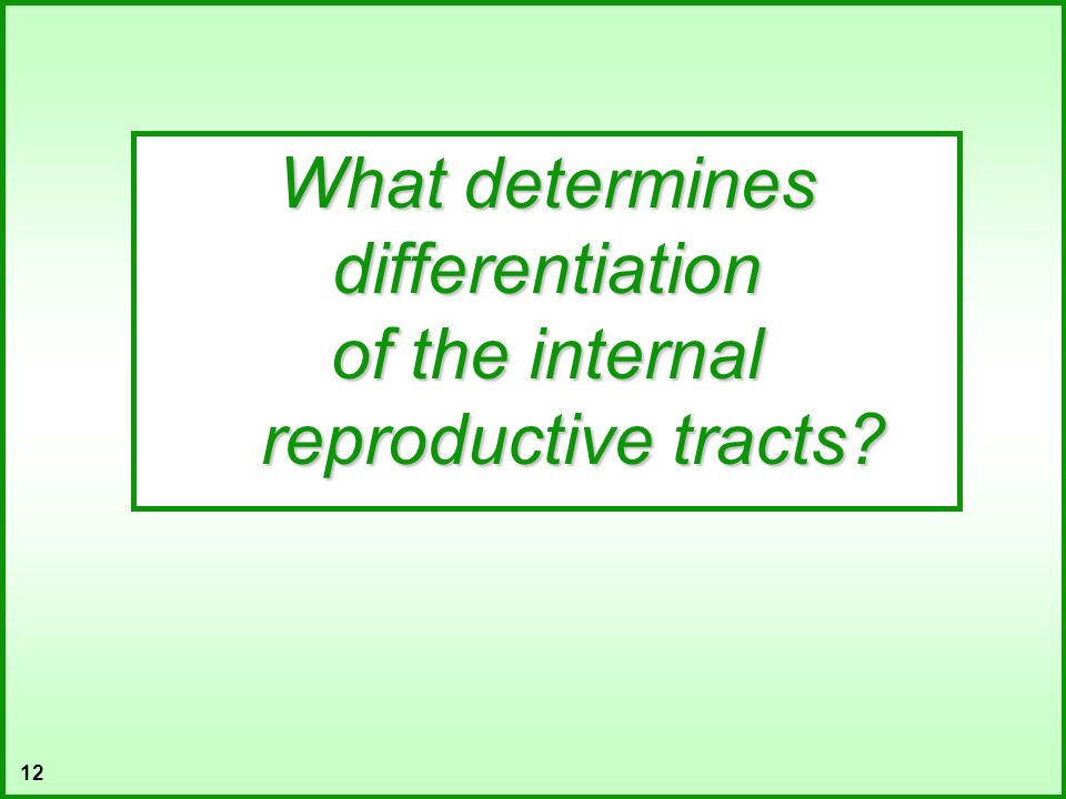 of the internal reproductive tracts