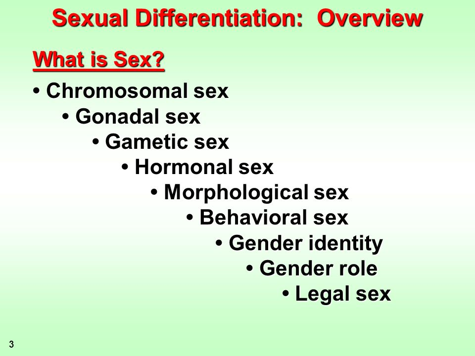 Sexual Differentiation: Overview