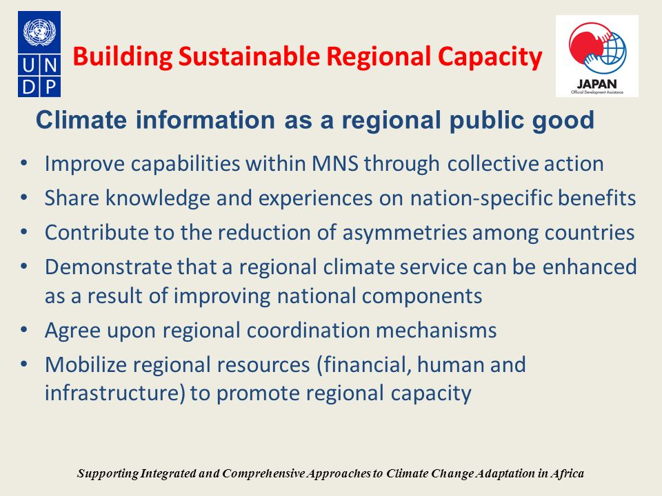 Building Sustainable Regional Capacity