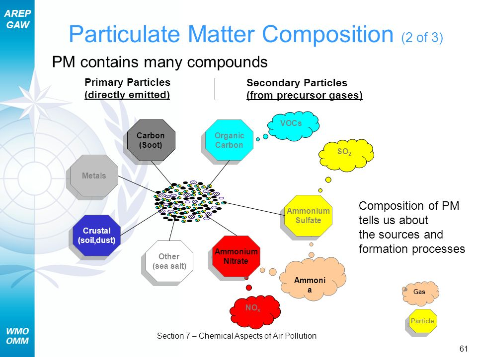 Particulate Matter Composition (2 of 3)