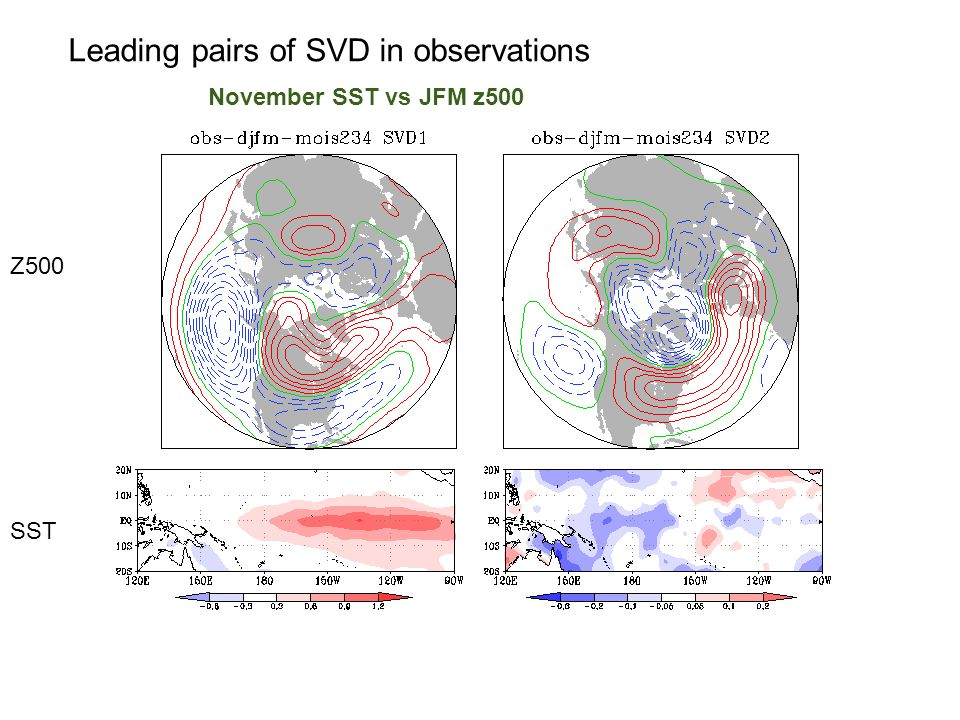 Leading pairs of SVD in observations